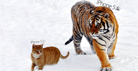 5s缺货5c减产:苹果iPhone组合拳战略遭遇挑战